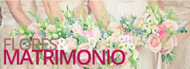 matrimonio-banner