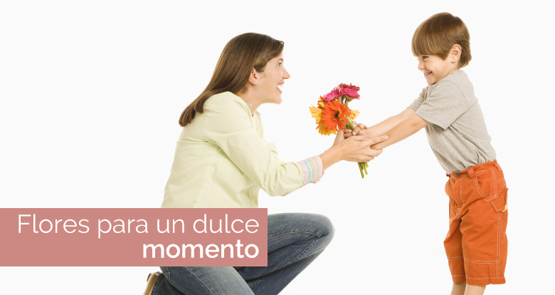 slider-dulce-momento