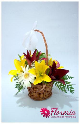 Canasta-de-Flores