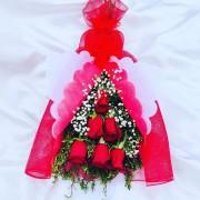 rosas rojas.6